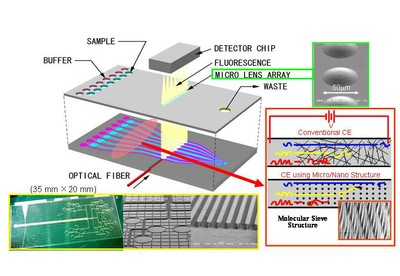 Concept of microchip for analyzing DNA base arrangement